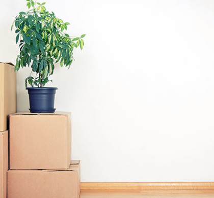 Looking for Portland Moving Companies this summer? Plan your move soon.
